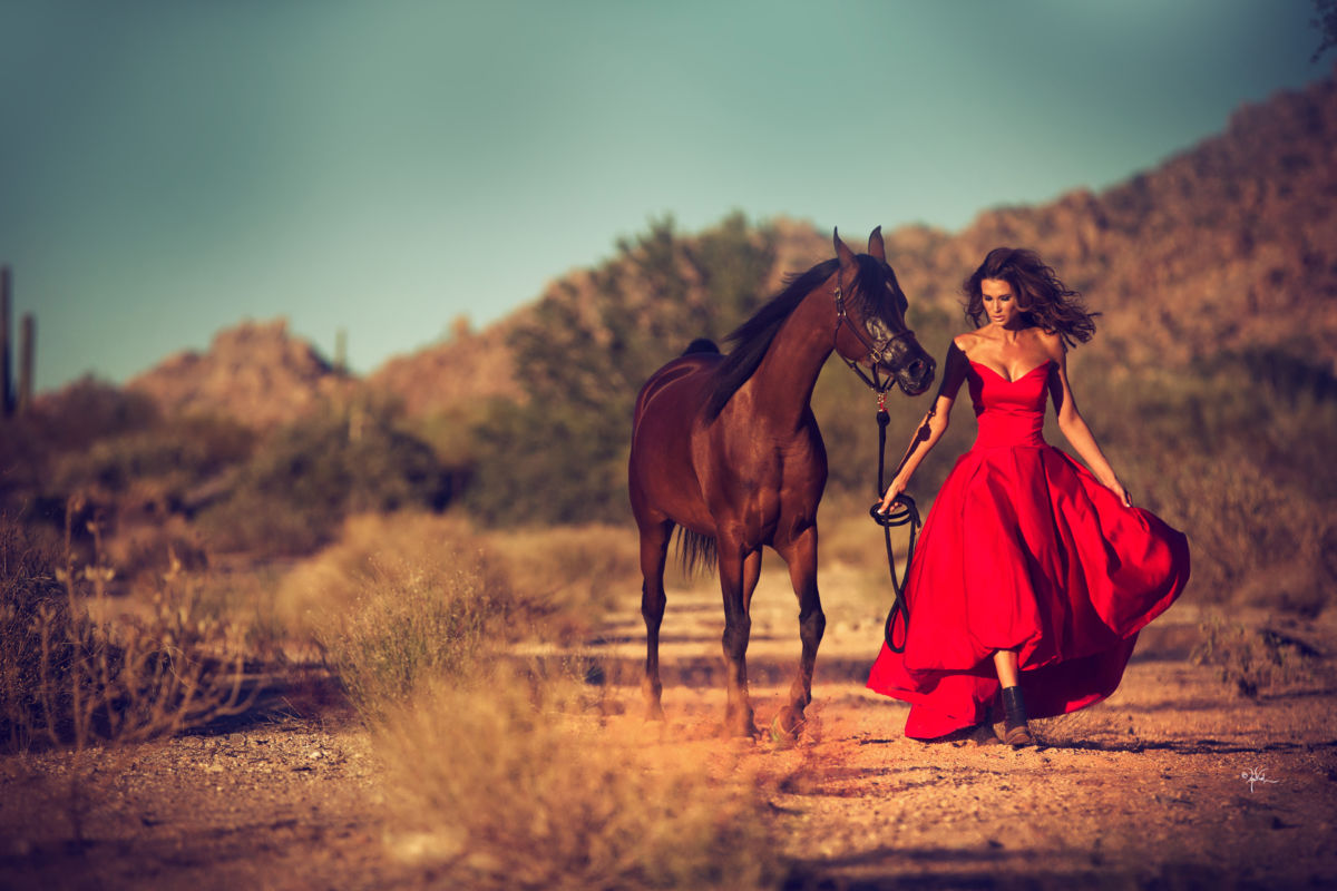 Scottsdale's Rich History & Legacy of the Arabian Horse
