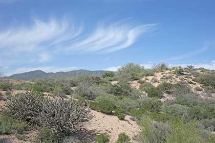 Rancho Santa Fe Del Oro