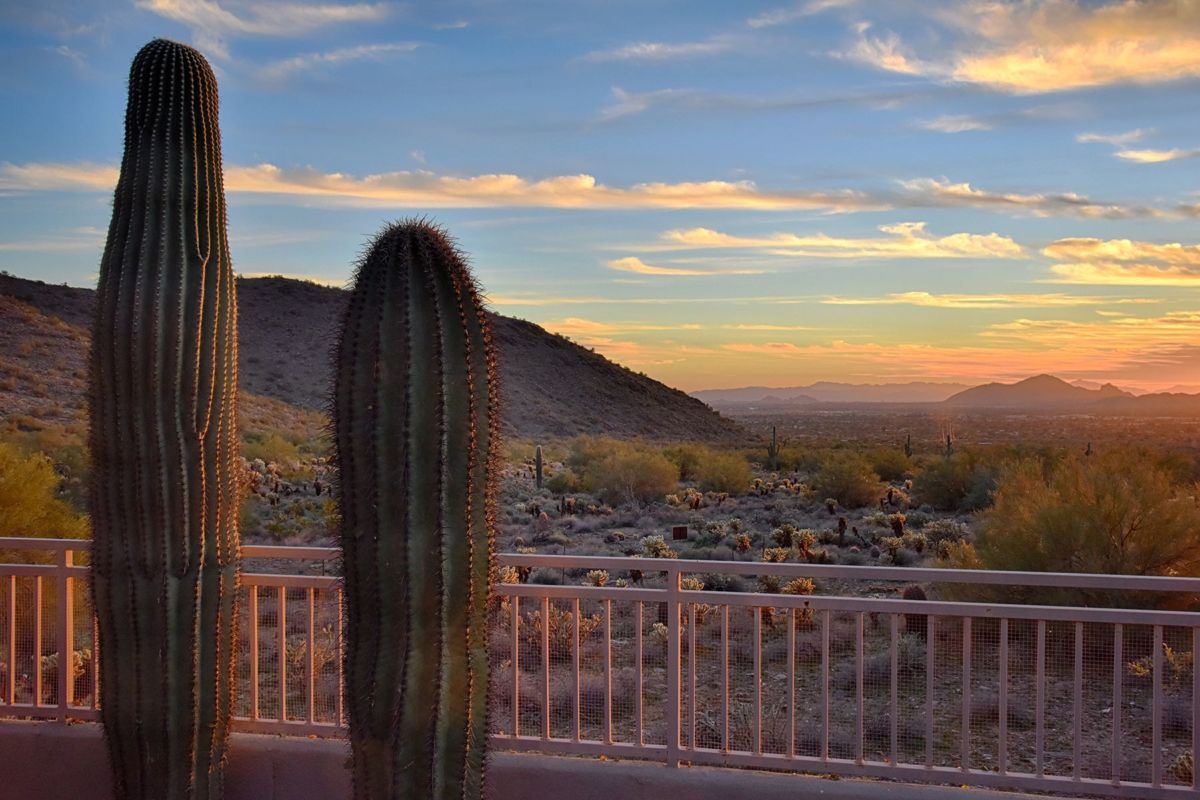 McDowell Mountain and Open Area Space