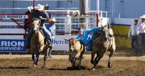 Parada del Sol Rodeo | March 7-10, 2019